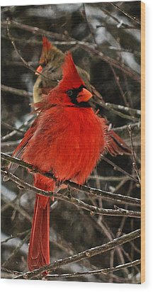 Valentines Wood Print by John Harding