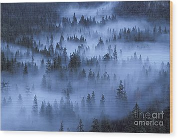Wood Print featuring the photograph Valley In Fog by Stan and Anne Foster
