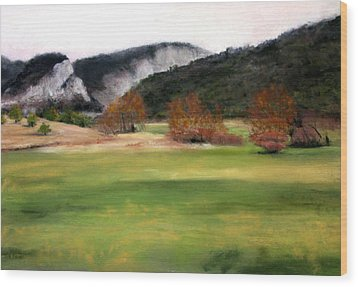 Valley Landscape Early Fall Wood Print by Cindy Plutnicki