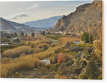 Valley Of Andalusia Wood Print by Marek Stepan