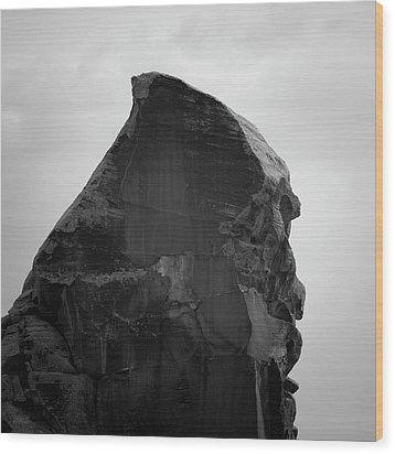 Valley Of Fire II Sq Bw Wood Print by David Gordon