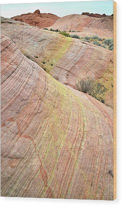 Wood Print featuring the photograph Valley Of Fire Pastel Dunes by Ray Mathis