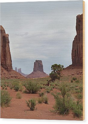 Valley View Wood Print by Gordon Beck