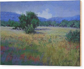 Valley View Wood Print by Paula Ann Ford