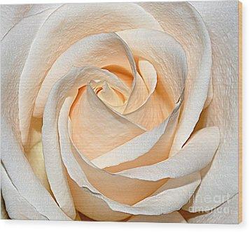 Vanilla Cream Wood Print
