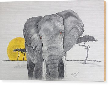 Vanishing Elephant Wood Print