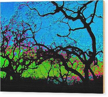 Variations 1 Wood Print by Tim Tanis
