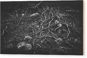 Vascular Wood Print by Matti Ollikainen