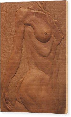 Vase Series II Wood Print by Dan Earle