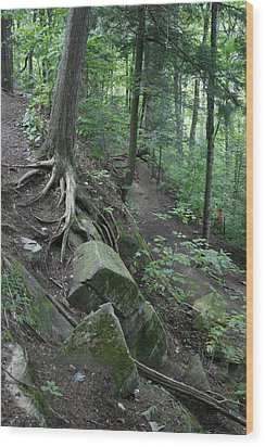 Velvet Rock Wood Print by Alan Rutherford
