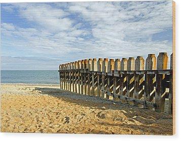 Ventnor Beach Groyne Wood Print by Rod Johnson