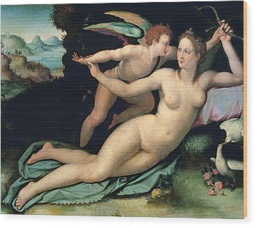 Venus And Cupid Wood Print by Alessandro Allori