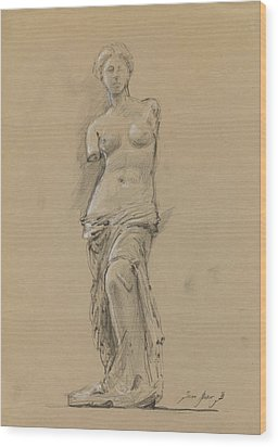 Venus De Milo Wood Print by Juan Bosco