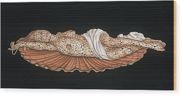 Venus On The Half-shell Wood Print by Tina Blondell