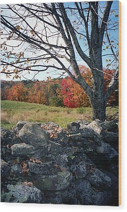 Wood Print featuring the photograph Vermont Autumn by John Scates