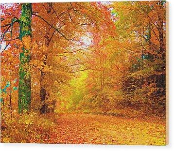 Vermont Autumn Wood Print by Vicky Brago-Mitchell