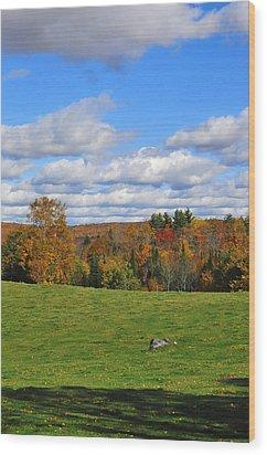 Vermont Field Wood Print by Mandy Wiltse