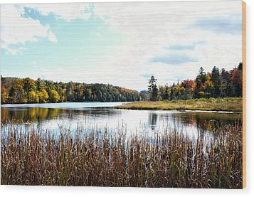 Vermont Scenery Wood Print by Rena Trepanier