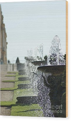 Versailles Fountains Wood Print