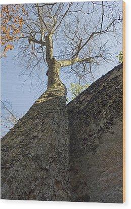 Vertical Wood Print by Alan Raasch