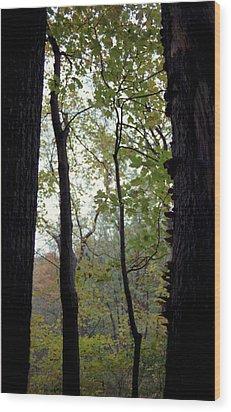 Vertical Limits Wood Print