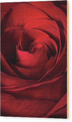 Vertical Rose Wood Print