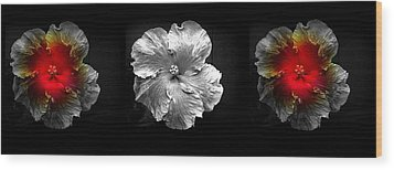 Vibrant Flower Series 3 Wood Print by Jen White