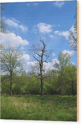 Vibrant Individualism Wood Print