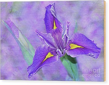 Wood Print featuring the photograph Vibrant Iris On Purple Bokeh By Kaye Menner by Kaye Menner