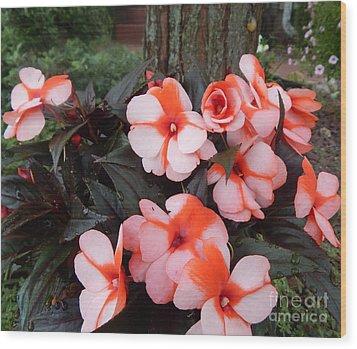 Plumerias Vibrant Pink Flowers Wood Print