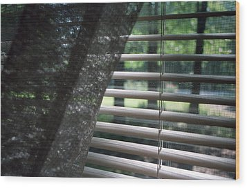 Wood Print featuring the photograph View From A Window by Wanda Brandon