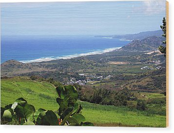 Wood Print featuring the photograph View From Cherry Hill, Barbados by Kurt Van Wagner