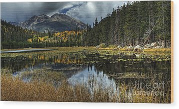 View From Cub Lake Wood Print by Pete Hellmann