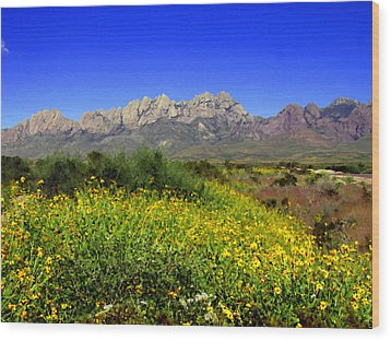 View From Dripping Springs Rd Wood Print by Kurt Van Wagner