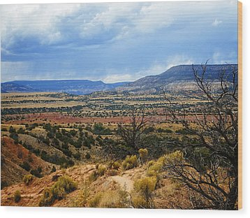 Wood Print featuring the photograph View From Ghost Ranch, Nm by Kurt Van Wagner