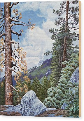 View From High Castle Wood Print