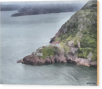 View From Signal Hill Wood Print by Jeff Kolker
