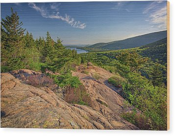 View From South Bubble Wood Print by Rick Berk