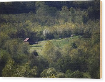 View From The Pond At The Hacienda Wood Print by David Lane