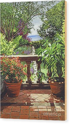 View From The Royal Garden Wood Print by David Lloyd Glover