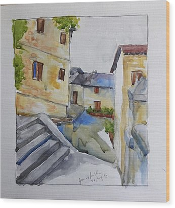 View From The Steps  Wood Print by Janet Butler