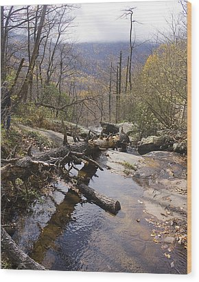 Wood Print featuring the photograph View From The Top by Alan Raasch