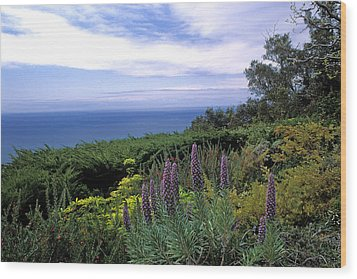 View From Ventana Big Sur Wood Print by Kathy Yates