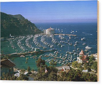View Of Avalon Harbor Wood Print by Cliff Wassmann