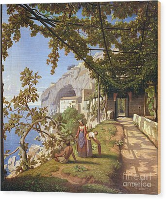 View Of Capri Wood Print by Theodore Aligny