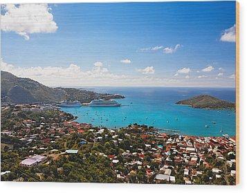 View Of Charlotte Amalie St Thomas Us Virgin Islands Wood Print by George Oze