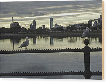 View Of City Of Boston From Castle Island Wood Print