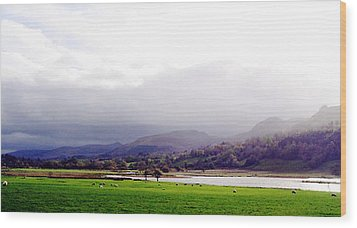 View Of Glencar Wood Print by Amy Williams