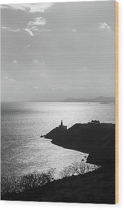 View Of Howth Head With The Baily Lighthouse In Black And White Wood Print by Semmick Photo