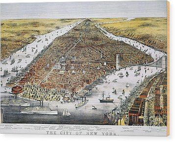 View Of New York, 1876 Wood Print by Granger